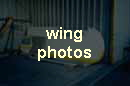wing photos